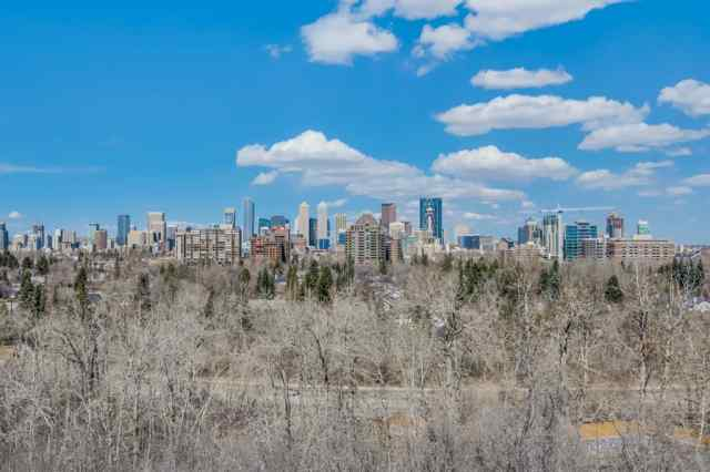 313 33 Avenue SW in Parkhill Calgary MLS® #A1046049