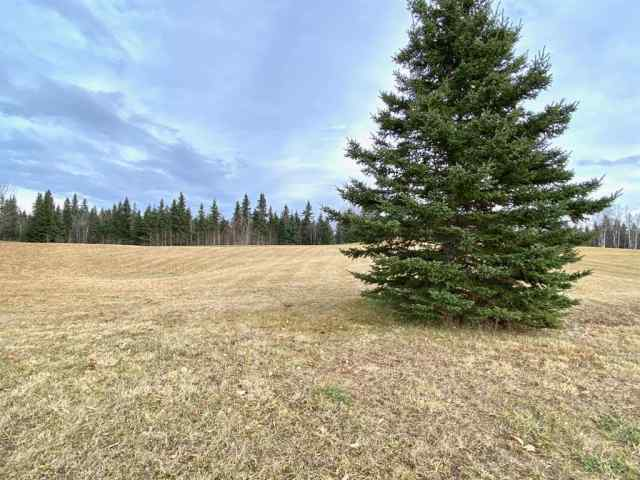 17 Hidden Valley Close  in Cougar Ridge Rural Clearwater County MLS® #A1047262