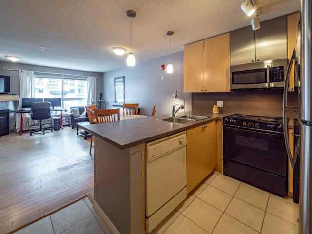 MLS® #A1049091 129, 30 Richard Court SW T3E 7N2 Calgary