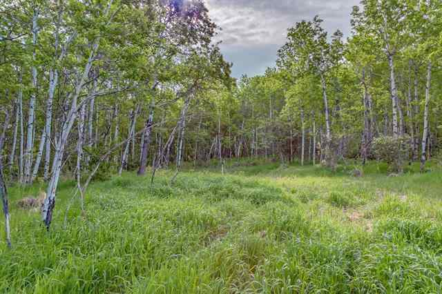 56 Stonewood Dale Place T3Z 3M8 Rural Rocky View County