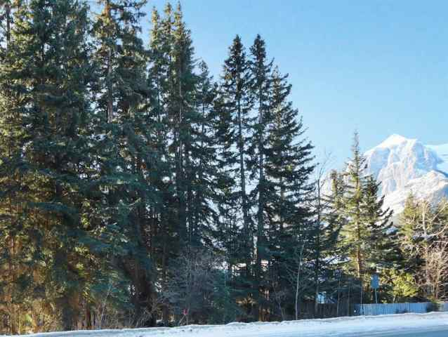 917 17 Street in Lions Park Canmore MLS® #A1059426