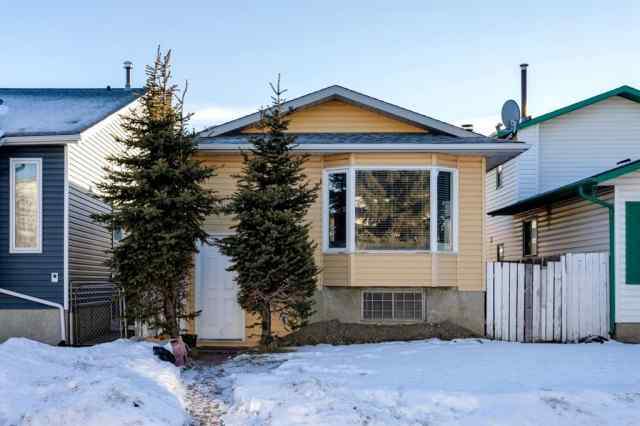 6081 Martingrove Road NE in Martindale Calgary MLS® #A1061535