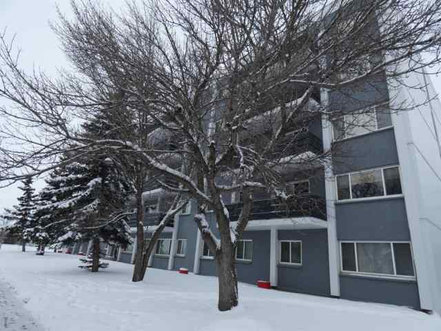 Avondale real estate 207, 10230 106  Avenue in Avondale Grande Prairie