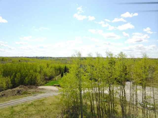 MLS® #C4294890 25205 BEARSPAW PL  T3R 1H5 Rural Rocky View County