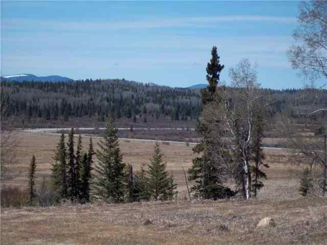 MLS® #C4296138 Hwy 584 T0M 1X0 Rural Mountain View County