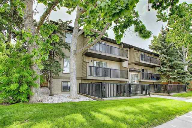 #102 4311 73 ST Nw in Bowness Calgary