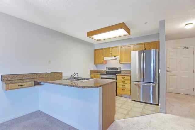#206 3 PARKLANE WY  in Downtown_Strathmore Strathmore