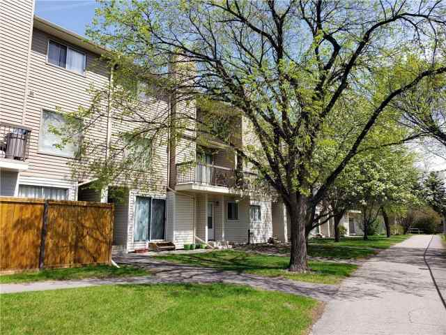 #96 2519 38 ST Ne in Rundle Calgary MLS® #C4306546