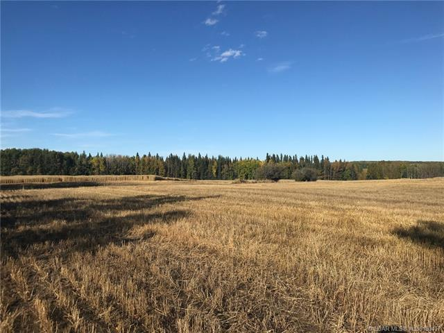 Near Township Road 564 Road  in  Rural Woodlands County MLS® #LD0180477