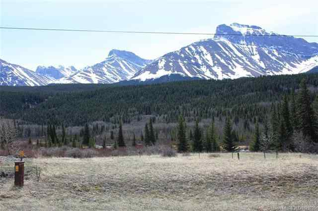 3602 18 Avenue  in Coleman Rural Crowsnest Pass MLS® #LD0193225