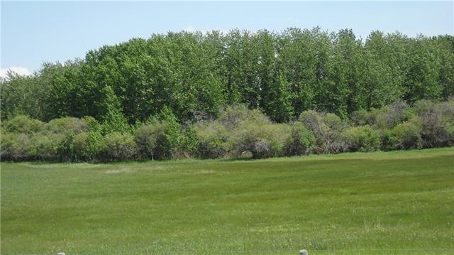 80 Street 226 Ave in None Rural Foothills County MLS® #C4219626