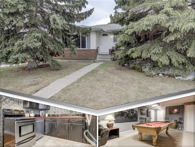 607 Templeside RD Ne in Temple Calgary MLS® #C4243184